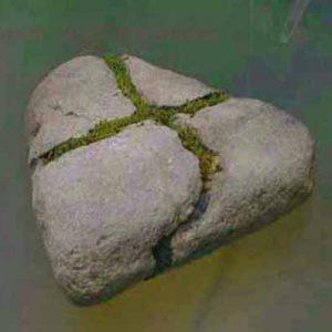 一輪挿し:自然石を割って少し広げて接着し、水が溜まるようにした。
