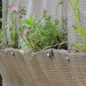 UWallに植栽を施す。